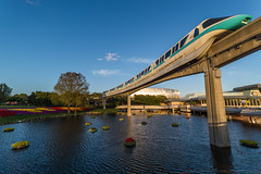 Monorail Teal at Sunset (wdwben) Tags: waltdisneyworld waltdisney waltdisneyworldresort waltdisneyworldparksandresorts waltdisneyworldparks disney disneyworld disneyparks disneyparksandresorts epcot epcotcenter epcotinternationalflowerandgardenfestival monorail monorailteal goldenhour sunset magichour futureworld worldofmotion testtrack nikon nikond610 irixlens irix15mm