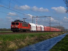 DBC 1611 (jvr440) Tags: trein train spoorwegen railroad railways dbc db cargo 1600 1611 haarlem haarlemmerliede