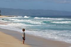B03A4488_DxO (Estebahn De Peschruse) Tags: hawaii island ocean pacific wave surf usa travel trip canon5dmarkiii oahu banzaipipeline