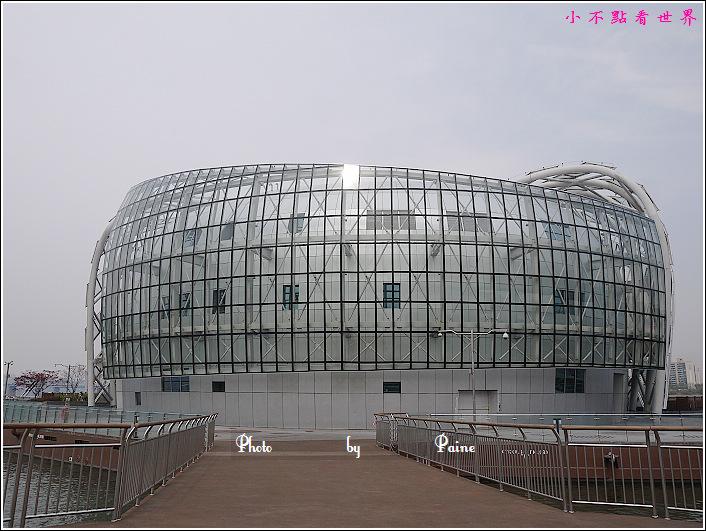 漢江浮島 (24).JPG