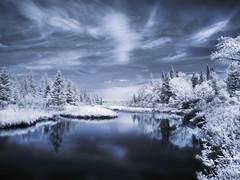 Winter in Summer (Explore) (MomoFotografi) Tags: blue sky white reflection tree forest landscape flickr explore infrared paysage zuiko dreamscape hoya megantic winteriscoming r72 zd 1454mm infrarouge explored fsuro
