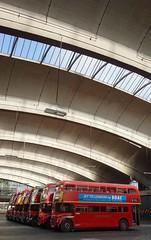 Bus Line Up (McTumshie) Tags: england bus london unitedkingdom routemaster rt stockwell londonist stockwellbusgarage rt1702 yotb kyy529 rtl453 klb648 rtl1163 kgk803 rm1063 rtl139 rtl1076 luc253 yearofthebus stockwellbusgarageopenday 21june2014