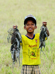 182916695_ A boy catching many rats on rice field in southern Vietnam. (phuong.sg@gmail.com) Tags: boy food brown strange field animal asian mouse mammal grey rodent wooden rat aluminum asia close rice skin grunge tail central dirty meat vietnam mice eat domestic disgusting ready catch oily weathered grilled trap pest indochina phuot