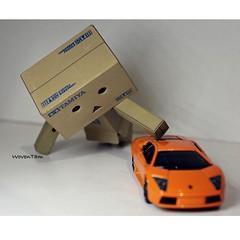 10171816_10201836100247513_4859446089150704388_n (WovenTam) Tags: toys lamboghini danbo danboard minidanboard