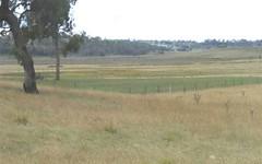 Golf Links Road,, Glen Innes NSW