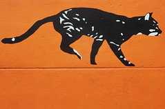 Arnaud Crassat_0532 rue Westermeyer Ivry (meuh1246) Tags: streetart chat animaux ivry ivrysurseine arnaudcrassat ruewestermeyer