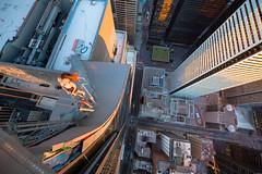 Ginger (tomms) Tags: urban toronto yellow skyline downtown cityscape vertigo core dense rooftopping rooft