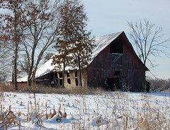 Old Peterson Barn (Gerald Barnett) Tags: blue trees winter usa white snow abandoned barn landscape illinois weeds nikon availablelight neglected barns scenic naturallight bluesky oldbarns nostalgia faded dried withered wintertime oldwood redbarn snowscape snowscene oldbarn southernillinois naturalcolor illinoisarchitecture