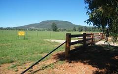 LOT 4 BUSHES LANE, Gunnedah NSW