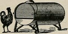 Anglų lietuvių žodynas. Žodis fowl-grass reiškia n bot. paprastoji miglė lietuviškai.