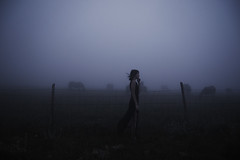 (Alessio Albi) Tags: shadow portrait horses woman fog dark mood atmosphere