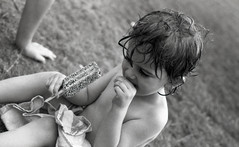 Leica M6 FP4+ 125 485 (Tecumseh73) Tags: leica home 50mm arboretum m summicron plus processed ilford fp4 m6 walsall 125 homeprocessed walsallarboretum