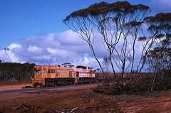 Iron Duke construction (Bingley Hall) Tags: train gm diesel transport engine rail railway australia transportation locomotive kodachrome southaustralia g8 whyalla bhp emd de01 1067mm