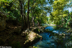 Israeli Trail 2 (EagleXDV) Tags: road trip travel people man reflection green nature water grass forest river landscape flow israel sand weed woods rocks stream path stones wheat hike trail crop backpack agriculture