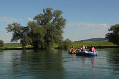 Schlauchboot Sevylor Caravelle K105 ( Gummiboot ) auf dem Rhein ( Fluss - River - Hochrhein ) zwischen der E.inmndung der T.hur und der T.ssegg an der Grenze vom Kanton Schaffhausen und Zrich in der Schweiz (chrchr_75) Tags: chriguhurnibluemailch christoph hurni schweiz suisse switzerland svizzera suissa swiss kantonzrich chrchr chrchr75 chrigu chriguhurni 1408 august 2014 hurni140808 schlauchboot sevylor caravelle k105 gummiboot albumschlauchbootsevylorcaravellek105 gummiboote schlauchboote boot jolle dinghy boat jolla canot  sloep bote albumschlauchbootegummibooteunterwegsinderschweiz august2014 rhein rhin reno rijn rhenus rhine rin strom europa albumrhein fluss river joki rivire fiume  rivier rzeka rio flod ro