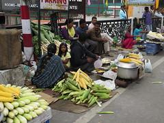 """Stand de maïs grillé <a style=""""margin-left:10px; font-size:0.8em;"""" href=""""http://www.flickr.com/photos/83080376@N03/14888317708/"""" target=""""_blank"""">@flickr</a>"""