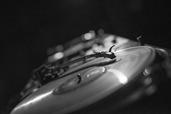 Rumbar - Record (eVo photo) Tags: party music bar night rum nightlife cocktails rumbar