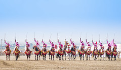 Fantasia - pink riders (Houssam Alami) Tags: fire islam morocco knights arab fantasia oriental