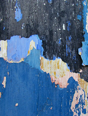 Old Paint (DanielaC173) Tags: old blue macro texture paint shedding cracked