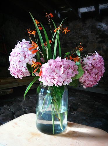 Hortensias and wild lillies