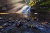 You 'Beaut (Dylan Toh) Tags: light usa sun oregon landscape photography waterfall silverton filter pacificnorthwest reel cameraclub everlook exposureblend rawfiles scottsmills buttecreekfall upperbuttecreek