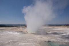 DSC08743 (sylviagreve) Tags: unitedstates yellowstonenationalpark yellowstone wyoming 2013
