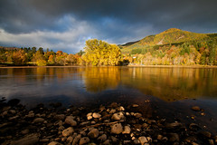 Just before rain ... (Daniel Giza) Tags: autumn trees reflection water forest river perthshire