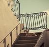 [Santorini - Greece] Aegean dog (Cyrielle Beaubois) Tags: summer dog chien holiday stairs square island europe shadows september santorini greece lazy santorin grèce cyclades fira 2014 canonef70200mmf40lusm canoneos5dmarkii cyriellebeaubois