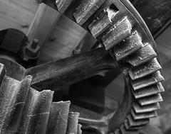 Holgate Windmill, September 2014 (20) (nican45) Tags: york blackandwhite bw slr mill windmill canon blackwhite yorkshire sigma machinery dslr cogs 1770 gears foodfestival bakeoff 600d 1770mm stonefloor hwps holgatewindmill eos600d 1770mmf284dcmacro stonesfloor