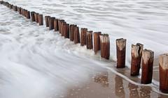Buhnen. (universaldilletant) Tags: domburg buhne meer ocean nordsee küste strand wasser