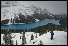 Mountain Hunting (Aaron M Photo) Tags: banff banffnationalpark bowsummit caldronlake caldronpeak canada canadianrockies glacier icefields icefieldsparkway jimmysimpson mistayariver mountjimmysimpson mountain mountains mtjimmysimpson nationalpark november peyto peytocreek peytoglacier peytolake peytopeak rockies rockymountains waptaicefield waputik waputikrange alberta beautiful beauty calgary fog foggy glacierfedlake lakescape landscape mountainscape nature parkway selfie snow snowy turquoise water winter