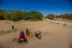 Somaliland_Mar17_0798 (GeorginaGoodwin) Tags: georginagoodwingeorginagoodwinimageskenyakenyaphotojournalistkenyanphotojournalist kenyaphotographer eastafricaphotographer kenyaphotojournalist femalephotographer idps refugees portraits portraitphotographer canon canon5dmarkiii canonphotos drought famine somalia somaliland malnutrition foodsecurity donorfunding aid foodaid wash health sanitation hornofafrica