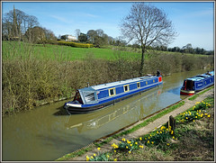 Canal time! (Jason 87030) Tags: canal guc grandunioncanal braunston hurch scene northants jasmine northamptonshire noats craft water view ony alpha a6000 ilce nex barge moorings towpath flowers uk england greatbritain unitedkingdom