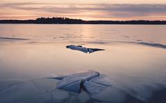 Birth of Ice (Bunaro) Tags: birth ice sunset warm winter snow ocean sea waterscape winterscape landscape water crack helsinki finland suomi uutela aurinkolahti vuosaari