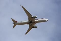 QATAR (giannhs_sk) Tags: canon6d canonef70200f28lisiiusm canon 6d qatar plane planespotting dreamliner 787 boeing zrh digital doha