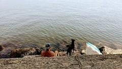 ver o mar (luyunes) Tags: praia mar verão urca cachorro cão omelhoramigodohomem motoz luciayunes littledoglaughedstories