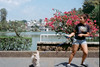 Carry on (AndreiSaade) Tags: minolta himatic7s minoltahimatic7s himatic kodak proimage 100 streetphotography rangefinder 35mm 35mmfilm keepfilmalive istillshootfilm méxico xalapa film