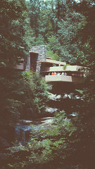 COAR - Fallingwater (Rafael Bojorquez Pacheco) Tags: fallingwater frank loyd wright arquitectura arch architecture forest bosque organic organicismo modernism modern modernismo pensilvania pennsylvania usa