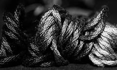Textile / Macro Mondays (camillagarin) Tags: macromondays textile