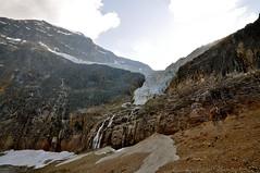Angel Glacier, Jasper National Park, Canada (leo_li's Photography) Tags: parcnationaljasper jaspernationalpark angelglacier alberta canada 加拿大 亞伯達省 canadianrockymountains rockymountains 洛磯山脈 亞伯達 艾伯塔省 艾伯塔