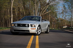 Mustang fever 1 (Roman Moïse) Tags: mustanng accord nc backroad car auto automobile mustang ford convertible drop top rain road yellow lights trees woods v8 50