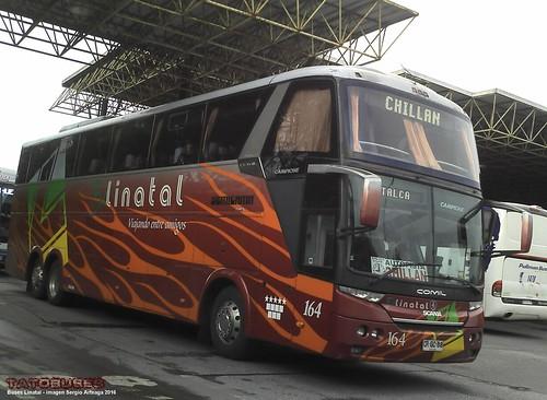 ← Buses Linatal ©→