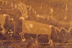 Second Big Buck. (W9JIM) Tags: w9jim rockart petroglyph combridge processionpanel bluffutah bearsears bearsearsnationalmonument 7d 24105l
