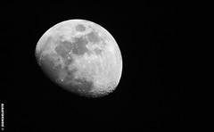 Lune 6 avril 2017 - 81% (Giancarlo - Foto 4U) Tags: c2017 200500 200500mm 81 d810 giancarlofoto nikon tc14eiii lune moon f700mm f56 afs e ed vr téléconvertisseur tc14e iii