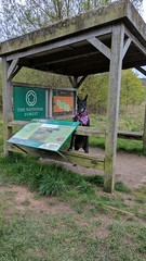 Evie reading up (eucharisto deo) Tags: evie dog sence valley park