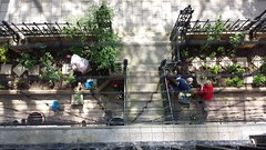working in the Stepney Green gardens (Carol B London) Tags: garden gardening lookingdown e1 birdseyeview weeding sgc ids stepney londone1 stepneygreen stepneygreencourt flickrandroidapp:filter=none