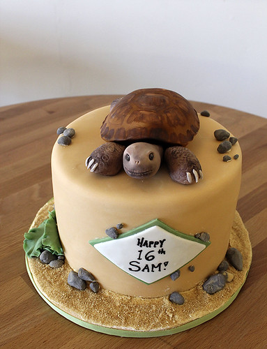 Tortoise birthday cake