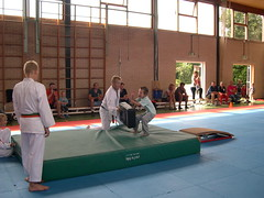 "zomerspelen 2013 karate clinic • <a style=""font-size:0.8em;"" href=""http://www.flickr.com/photos/125345099@N08/14403867731/"" target=""_blank"">View on Flickr</a>"
