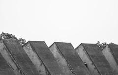Espacio escultrico (MaloMalverde) Tags: test white black blanco mxico 50mm lava nikon cu negro ciudad bn cielo sin nublado mm 300 70 bianco nero lugar rostro espacio coyoacn tiempo messico ejercicio universitaria ldico volcnica escultorico d7100