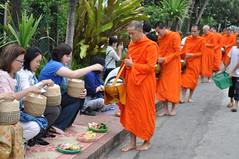 The faithful giving to the monks (oldandsolo) Tags: southeastasia earlymorning buddhism tourists lp laos luangprabang buddhistmonk laopdr makingmerit unescoworldheritagecity buddhistreligion takbat buddhistfaith morningalmsgivingritualluangprabang morningalmsgivinginluangprabang